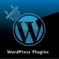 Corso Wordpress Plugins Padova - Corso avanzato di Wordpress plugins Padova Specialist